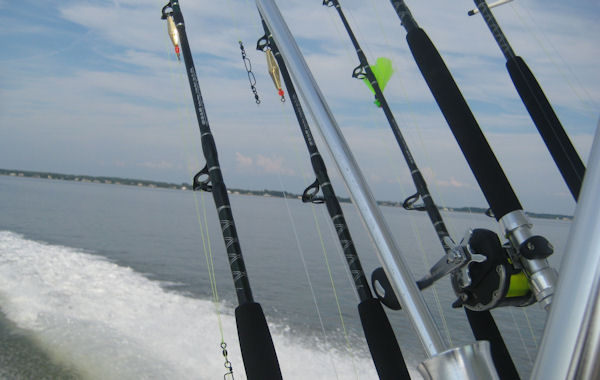 "Cove Chesapeake Series 56"" MH Carbon Blend Troller - Titanium Turbo Guides Striper Trolling Rods, Rockfish Trolling Rods, Chesapeake Bay Trolling, Cove Rods, Summer Trolling, Stripers"