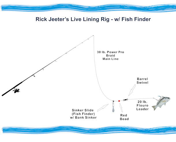 Rick Jeeter's Live Lining Rig - w/ Fish Finder