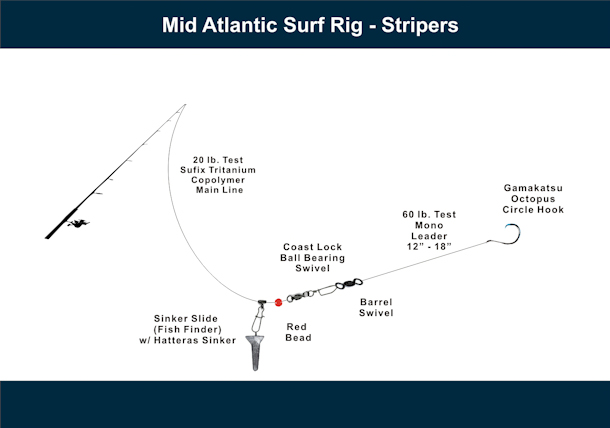 Mid Atlantic Surf Rig - Stripers