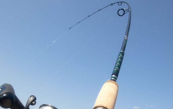"""Little Big Stick"" SAVE $20! Perch Rods, Striper Rods, Spot Fishing Rods"